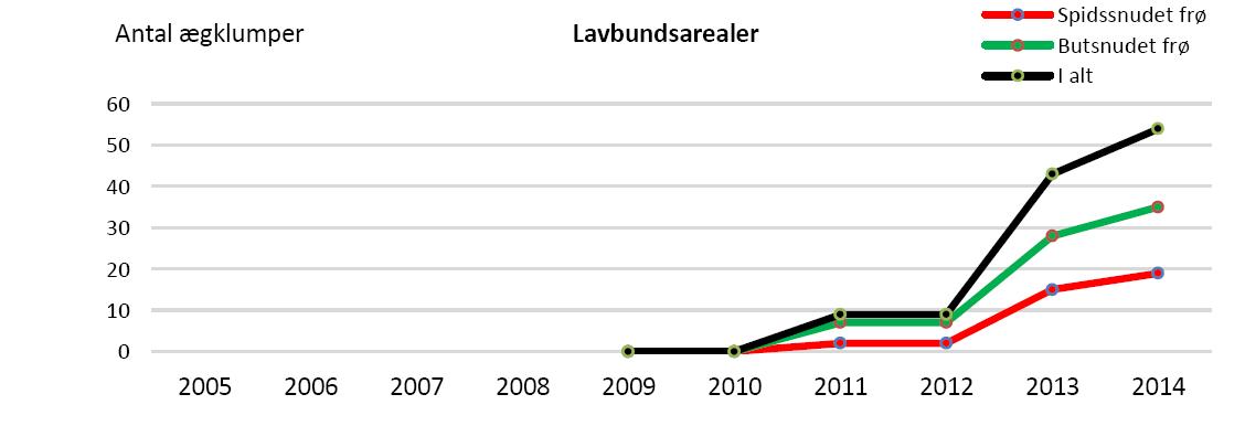 Ægklumper i lavbundsarealer siden 2009.