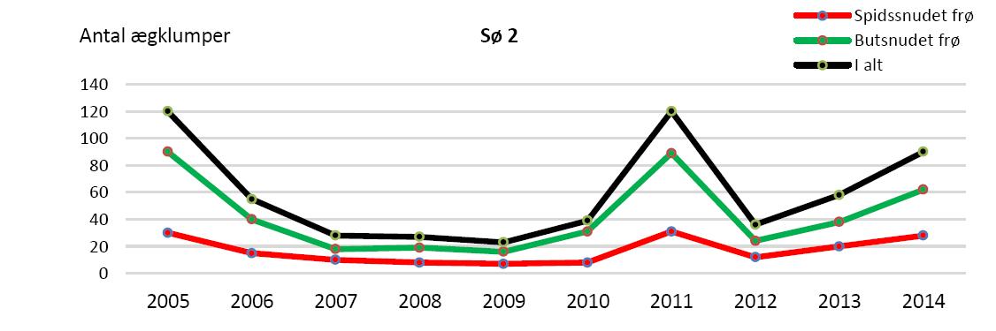 Antal ægklumper i sø 2 siden massakren i efteråret 2004.
